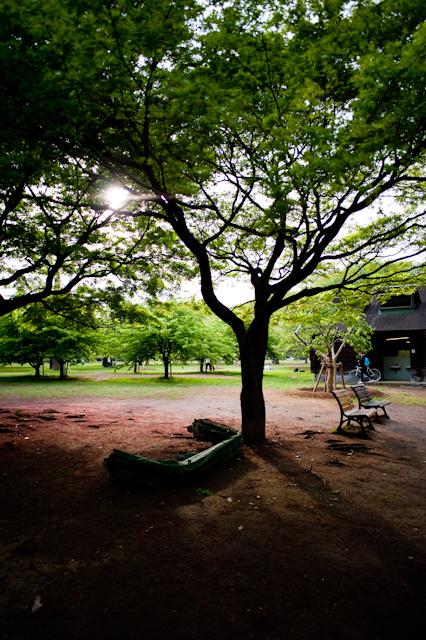 代々木公園F2.8